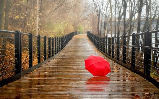 rainy-day-hd-wallpaper