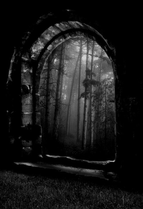 Doorway in Forest
