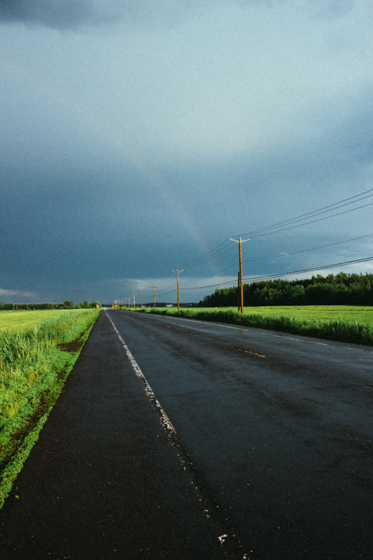 Road Taken