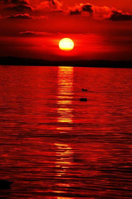 Blood Red Sky & Ocean